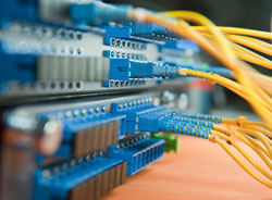 Fibre Optic Specialists